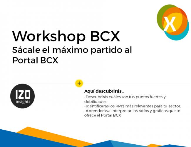 Workshop BCX